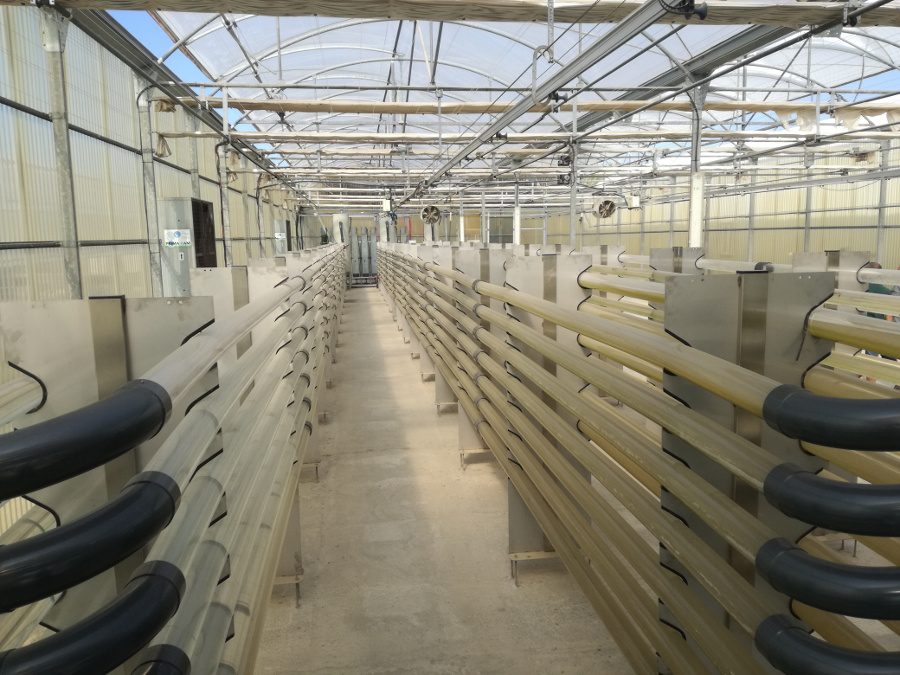 2018-2020: CALRESI: Large-scale microalgae production